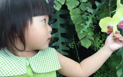 Explore green space with children.